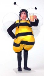 Bartender in Bee Costume